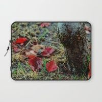 Deciduous Autumn Laptop Sleeve Need an incredible new cover for your laptop? Explore natural and created images on Society6.