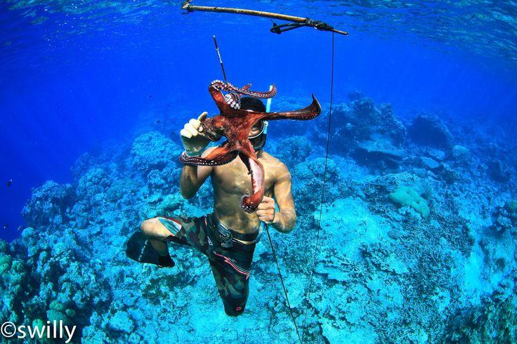 Star Fish Free Diving - Phonpei