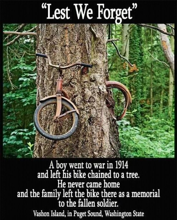 Lest We Forget - a boy went to war and never returned. His parents left his bike pinned to a tree to remember him.
