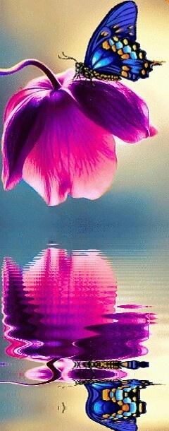 Eu desejo muito tá com você, só que não vc me quê pra vc de longe! Eu já te amo de longe sem chegar muito perto de você! O que de fato eu quero é que esteja presente em minha vida que saia um pouco comigo sem muita cerimônia que seja livre quando estiver ao meu lado e esteja completa assim como sou com você, permita que toque um pouco seu coração!