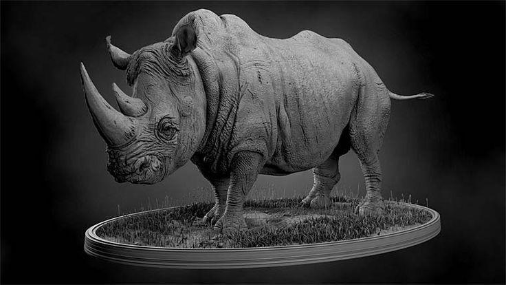 Pixologic :: ZBrush Gallery | Animals | Pinterest | Rhinos ...