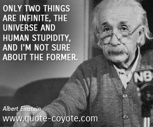 Albert Einstein - Only two things are infinite, the universe and human stupidity, and I'm not sure about the former.