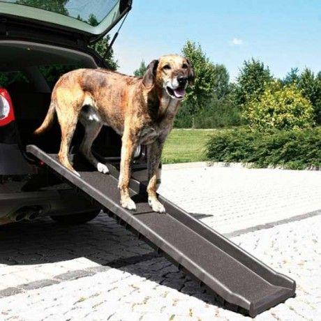 Rampe premium d'accès pour chien en voiture ou en déplacements