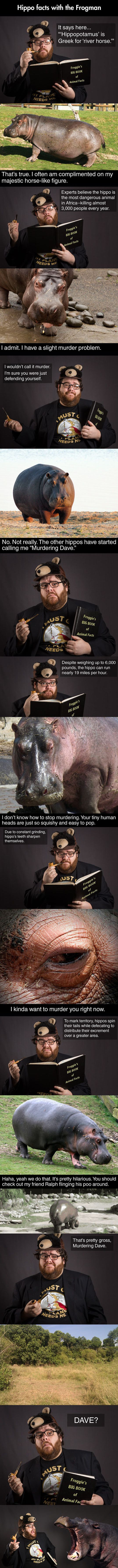 Hippo facts with the frogman  // funny pictures - funny photos - funny images - funny pics - funny quotes - #lol #humor #funnypictures