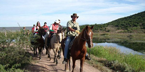 Horseriding at Botlierskop Game Reserve