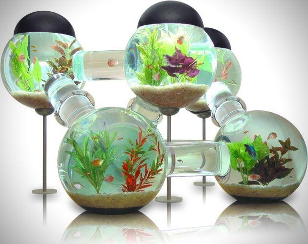 les 20 meilleures id es de la cat gorie aquarium pour poisson rouge sur pinterest. Black Bedroom Furniture Sets. Home Design Ideas