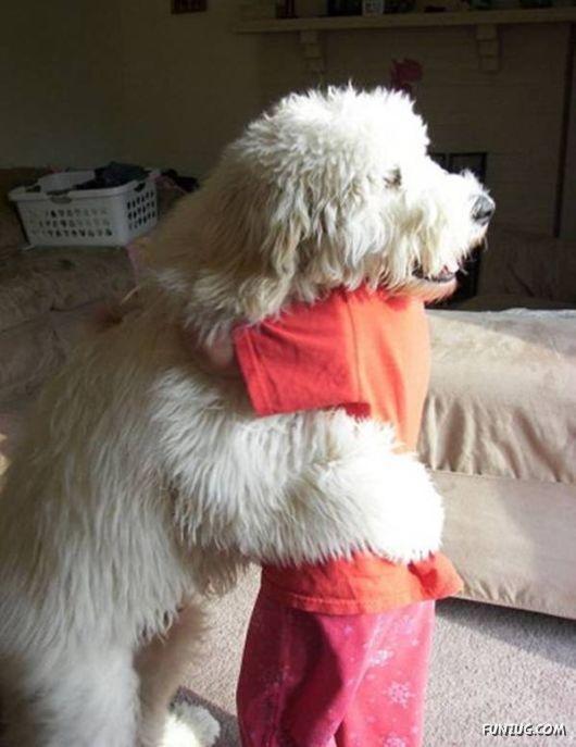 Hugs..Puppies, Best Friends, So Sweets, Doggie Hug, Baby Dogs, Giants Dogs, Animal, Dogs Baby, Dogs Hug