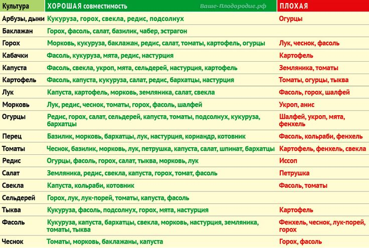 Таблица совместимости растений