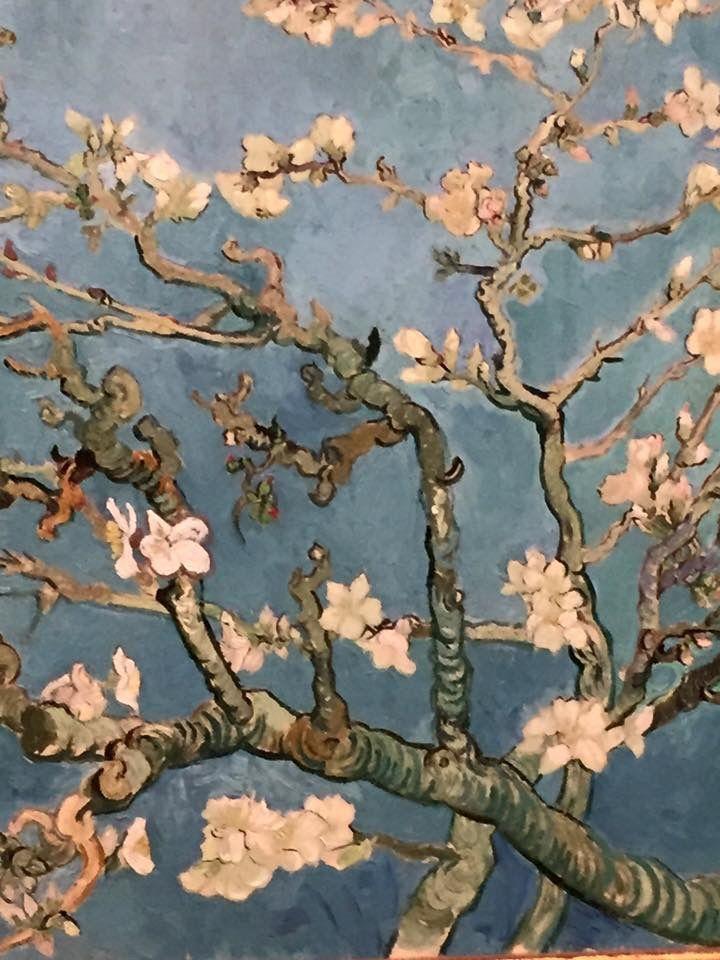 Vincent van Gogh wordt gegrepen door de lente in de Provence. Hij schildert het landschap en concentreert zich daarbij op de bloeiende fruitbomen. Later, als de zomer aanbreekt, verplaatst hij zijn aandacht naar het plattelandsleven.