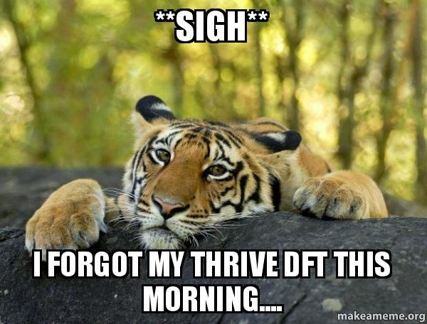 **Sigh** I forgot my Thrive DFT this morning.... - Confession Tiger