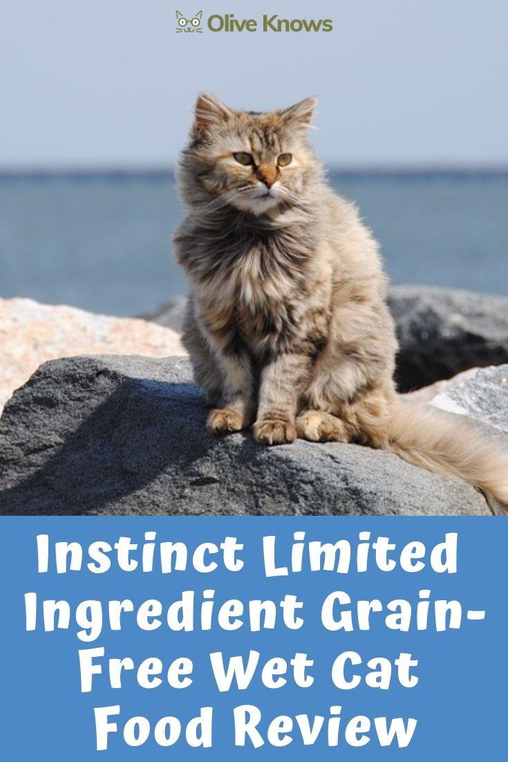 Instinct Limited Ingredient Grain Free Wet Cat Food Review Cat Food Reviews Cat Food Wet Cat Food