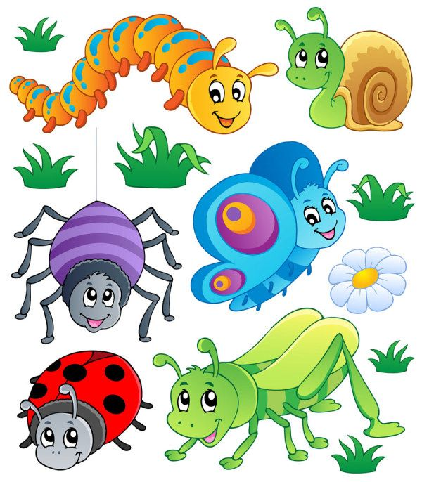 144 best insects clip art images on pinterest insects clip art rh pinterest com clip art bugs bunny clip art bugs insects