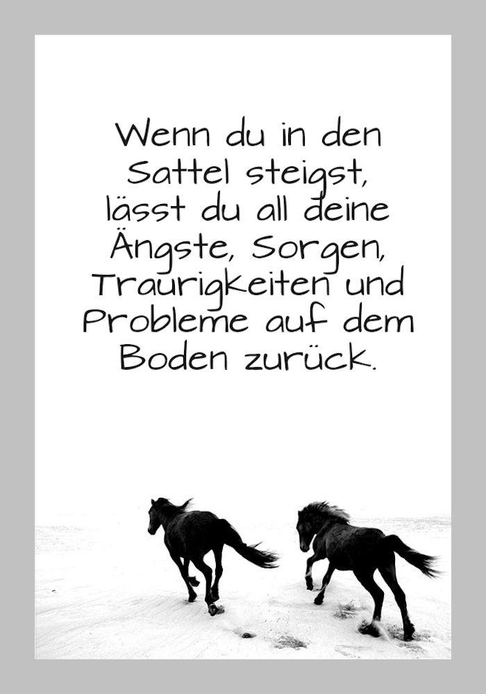 1001 + Ideen zum Thema schöne Pferdebilder und ...