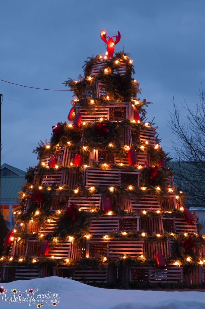 Lobster Trap Christmas Tree - I love this shot of it at night. True Rockland, Maine holiday cheer!