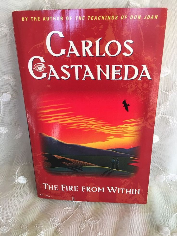 The Fire from Within by Carlos Castañeda (1991, Paperback)