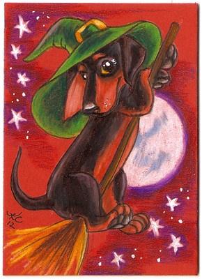 Halloween witchy dachshund