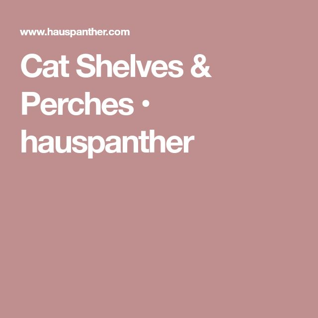 Cat Shelves & Perches • hauspanther