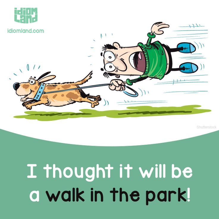 Idiom of the day: Walk in the park. Meaning: Something very easy to do. #idiom…
