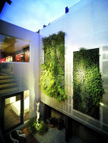 Muros verdes en espacio residenciales.