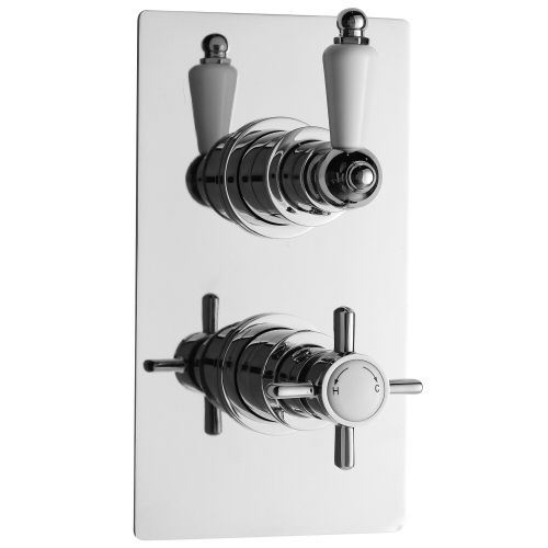 Beaumont Twin Concealed Thermostatic Shower Faucet Valve