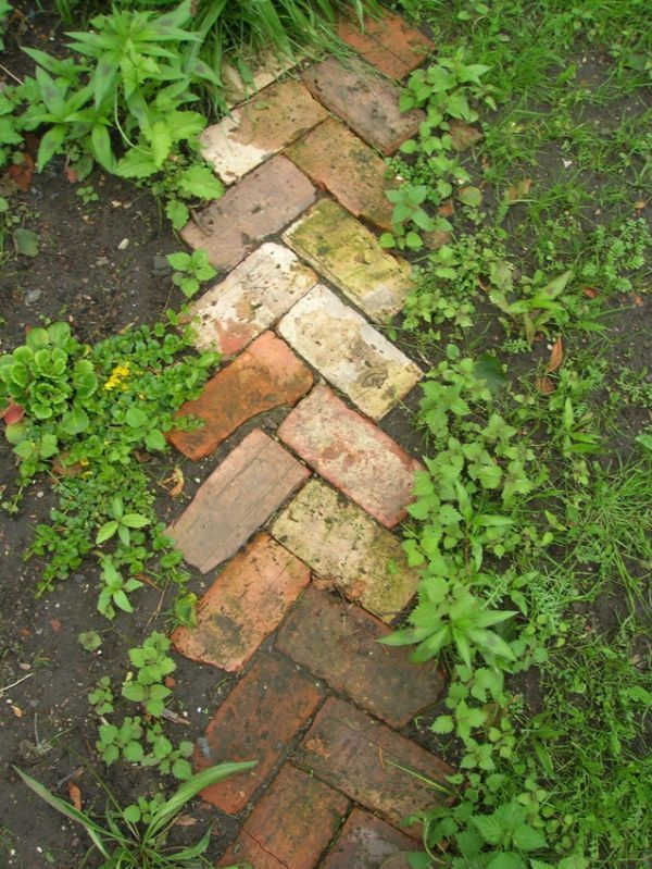 Reused brick path, garden bed edging