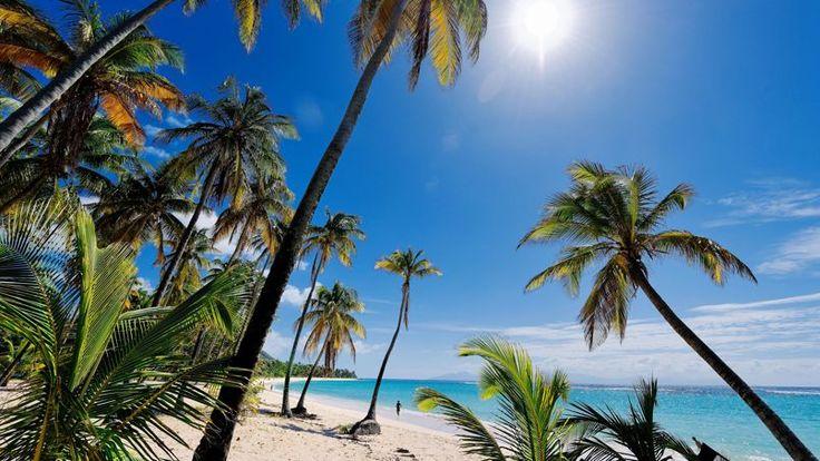 Cocotiers, sable blanc, mer turquoise…la plage de la Feuillère,, à Marie-Galante, mérite la réputation dêtre unes des plus belles des Caraïbes.