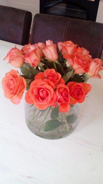 Mooie oranje rozen