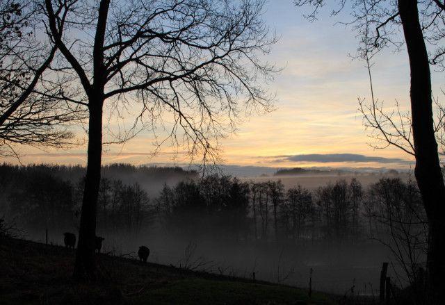 Tåge over ådalen ved tø i januar