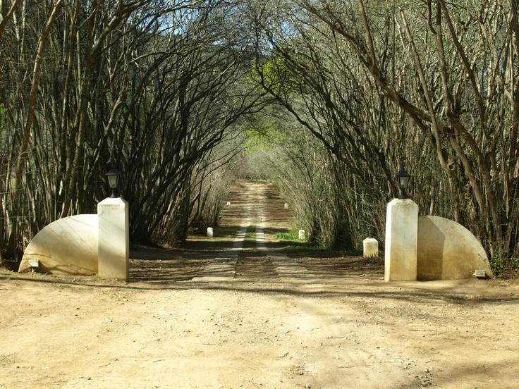 Hogsback Eastern Cape - Been to this very spot!