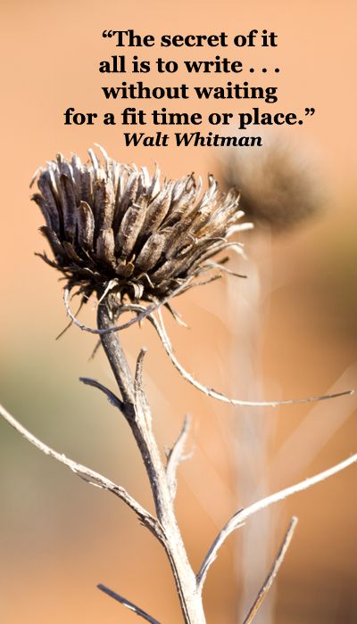"""""""The secret of it all is to write . . . without waiting for a fit time or place.""""  Walt Whitman's simply do it advice -- explore more quotes on creativity at http://www.examiner.com/article/best-inspiring-quotes-on-creativity"""
