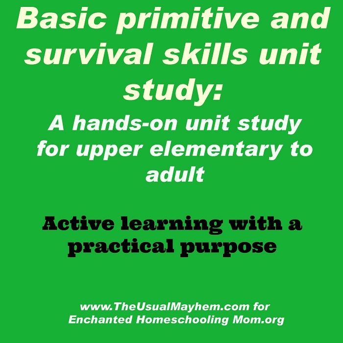 Survival Skills: Basic Primitive And Survival Skills Unit Study