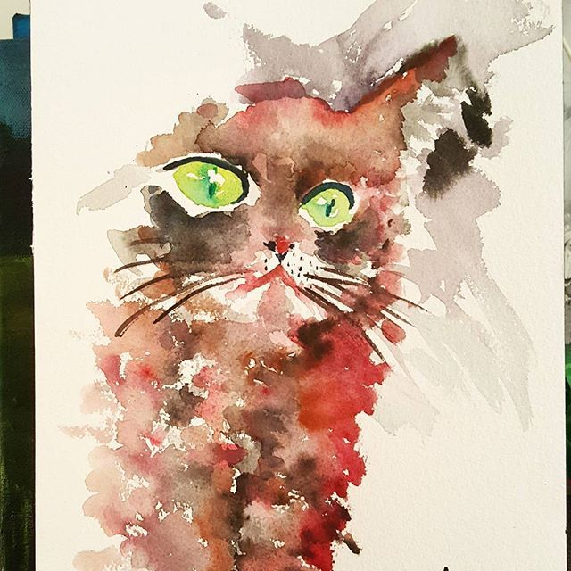 Cat's eyes    #watercolours #watercolor #acquerello #acuarela #aquerelle #cat #kitty #kittycat #bestmeow #gatto #gatti #animals #meow #insta #instagramer #followme #instalove #london #artislife #lifeisart #artwork #danielsmith #winsorandnewton #arches #keeptraining #paint #paintings