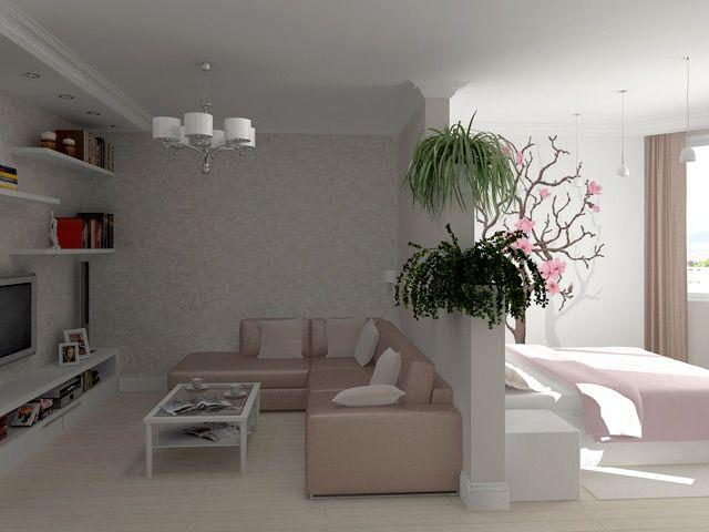 гостиная совмещенная со спальней фото - Поиск в Google