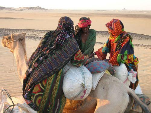 Una odisea contemporánea que se repite cada año en uno de los lugares más inhóspitos del planeta, el desierto del Sáhara. La directora belga Nathalie Borgers ha conseguido emocionar y sorprender, a través de unas imágenes espectaculares, con esta desconocida historia que confirma la capacidad ilimitada del ser humano. Un documental, rodado en Níger, sobre un grupo de mujeres excepcionales y su particular conquista de la libertad.