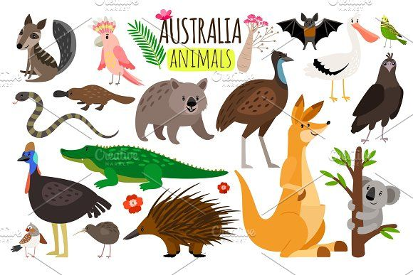 Australian Animals Vector Animal Icons Of Australia Kangaroo And Koala Wombat And Ostrich Emu Australian Animals Australia Animals Animal Icon