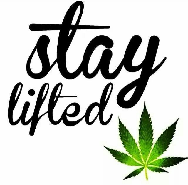 Stay lifted, my friends! Marijuana is powerful in edibles you make easily yourself. This book has great recipes for easy marijuana oil, delicious Cannabis Chocolates, and tasty Dragon Teeth Mints: MARIJUANA - Guide to Buying, Growing, Harvesting, and Making Medical Marijuana Oil and Delicious Candies to Treat Pain and Ailments by Mary Bendis, Second Edition. Only 2.99.    www.muzzymemo.com