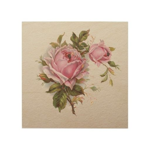 Elegant Pink Vintage Rose Wood Canvas