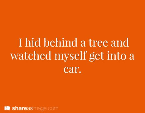 Prompt -- I hid behind a tree and watched myself get into a car