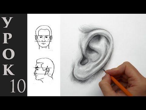 Азбука Рисования - Как нарисовать такое ухо. Как рисовать уши карандашом