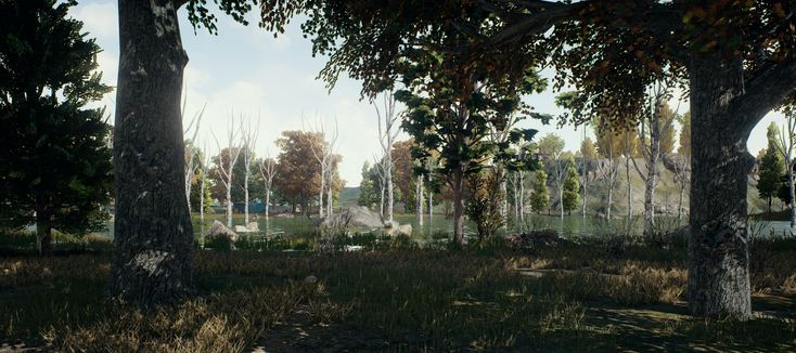 New Player Unknown's Battlegrounds 4k wallappers ,4K Pubg wallpaper phone, pubg wallpaper iphone, pubg wallpaper 1920x1080 hd, pubg nature 4k, pubg hd wallpapers, pubg 4k wallpapers, Player Unknown's Battlegrounds 4k wallpapers 9