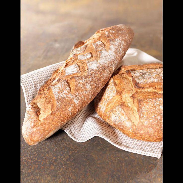 Pâte à pain