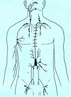 how to clear lymphatic congestion naturally