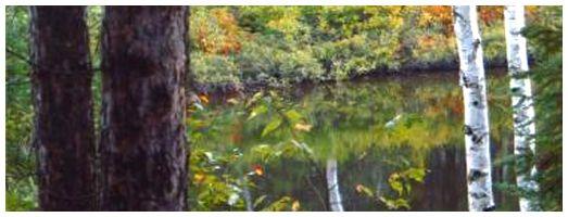 Stubb's Falls Trail | Ontario Trails Council
