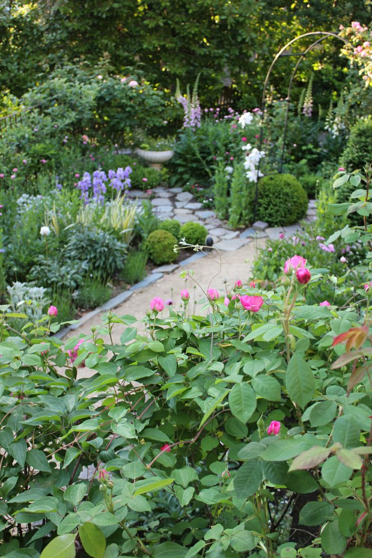 883 best images about garden paths on pinterest shade garden - Trouvais Garden What Beautiful Healthy Plants