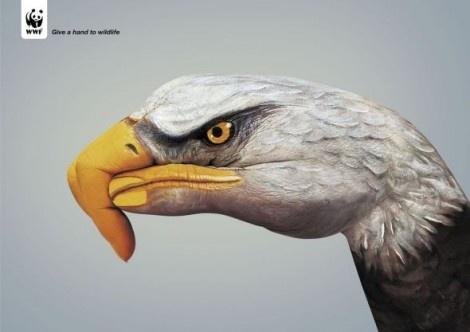 WWF adverts