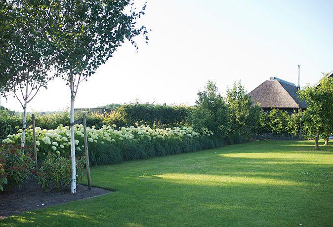 25 beste idee n over borders met vaste planten op pinterest tuin kanten bloemtuin grenzen en - Moderne tuin ingang ...