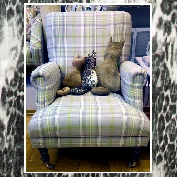 вместо обычной #подушки можно использовать наших декоративных кошек из велюра Zambesi #Galleria_Arben Цена мал 550 руб, бол 950 руб #pillows