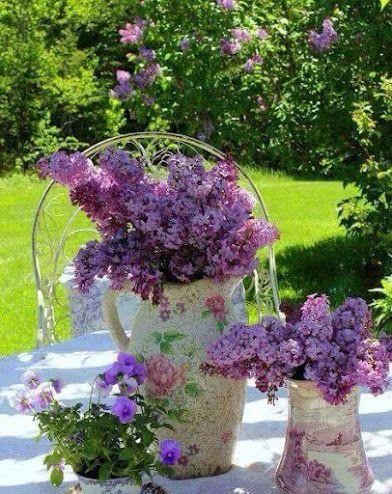 Flowers House - Community - Google+