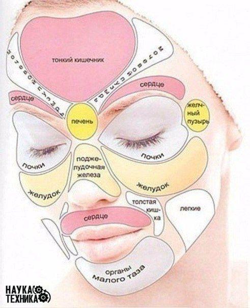 По области на лице, где расположились прыщи, можно узнать с какими органами у вас непорядки.