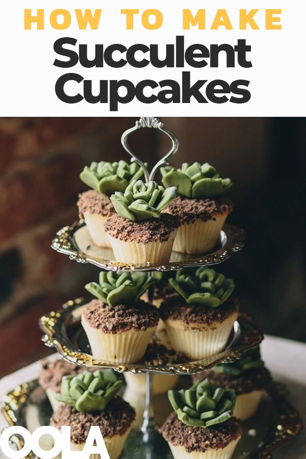 Let S Make Succulent Cupcakes Succulent Cupcakes Cupcake